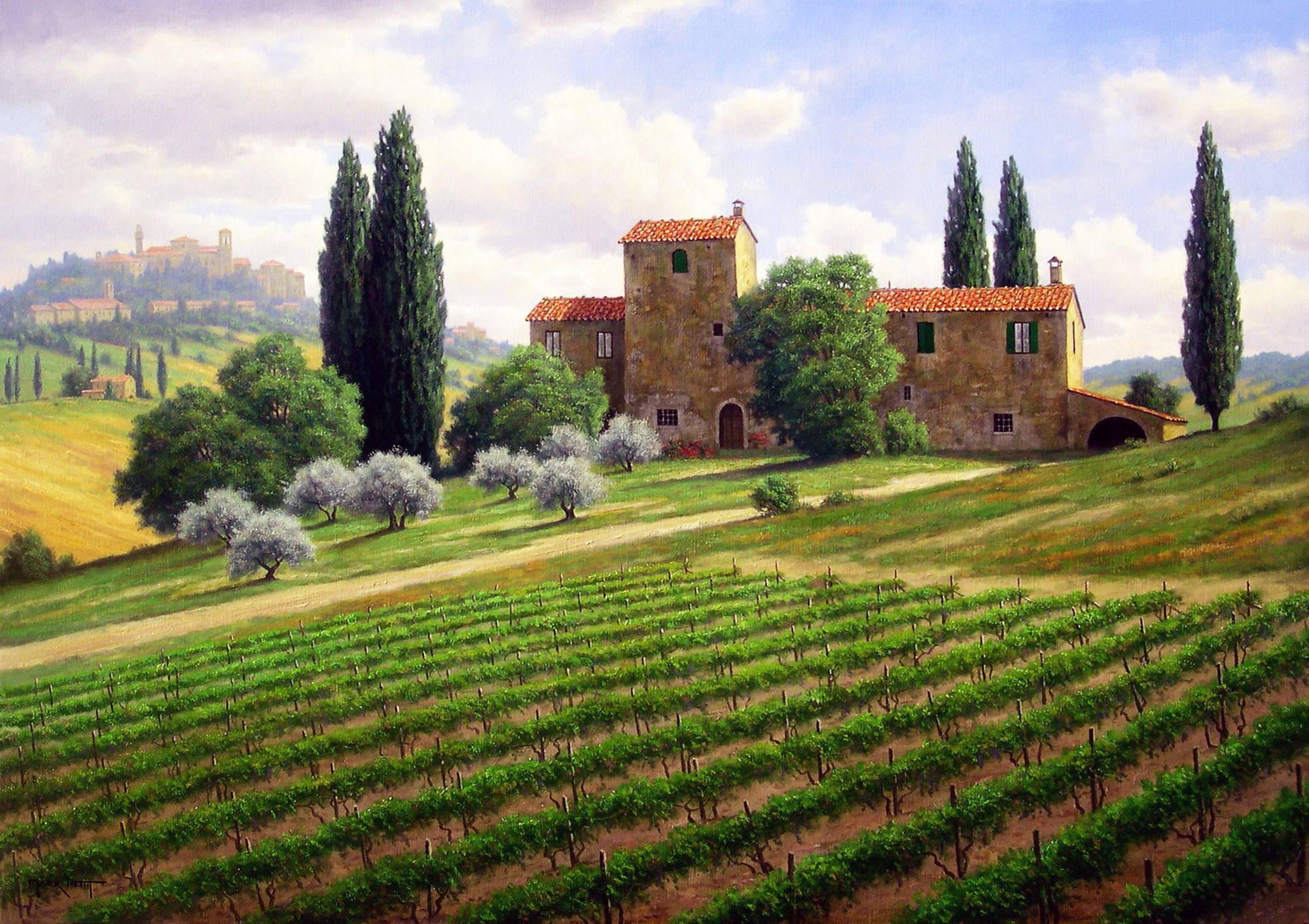 Виноградники марк петтит