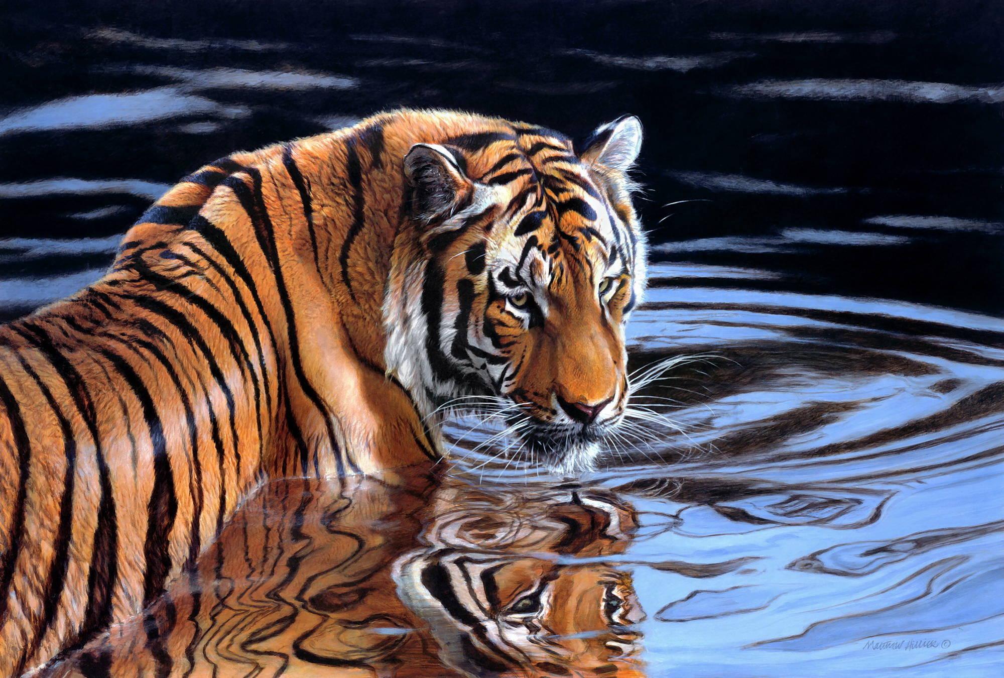Животные картины маслом 6