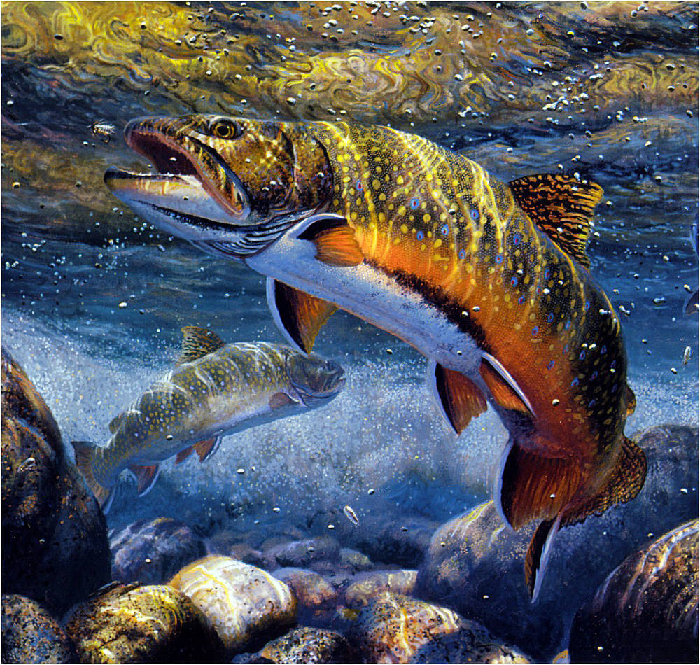 красивый рисунок рыбалка