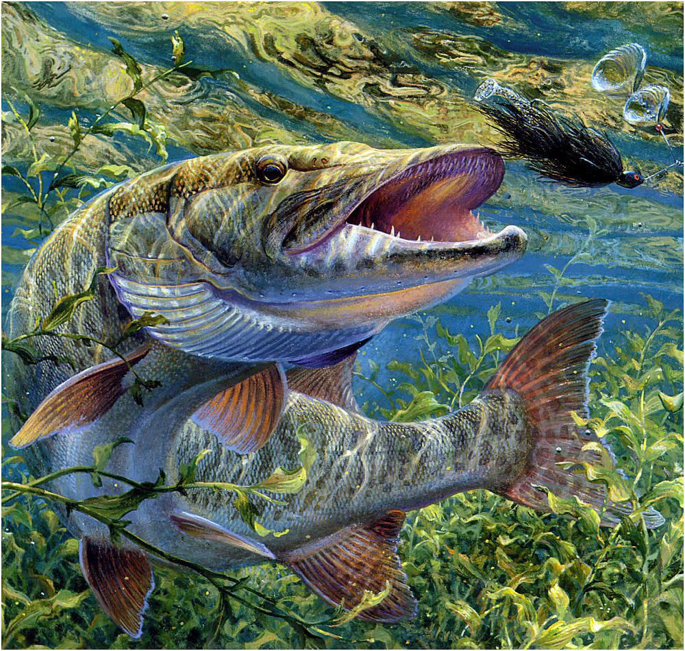 вышивка рыбалка щука